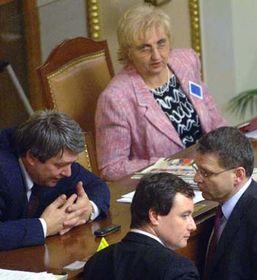 Ředitelka VZP Jiřina Musílková na zasedání Poslanecké sněmovny, foto: ČTK