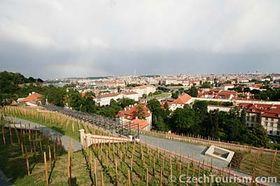 Las viña de San Venceslao, foto: CzechTourism