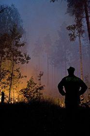 Waldbrände in Russland (Foto: ČTK)