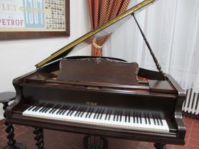 Petrof piano, photo: Martina Schneibergová