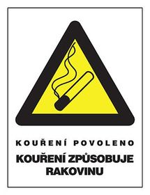 Smoking allowed, Smoking causes cancer, photo: CTK