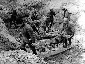 Odhalení masového hrobu vKatyni