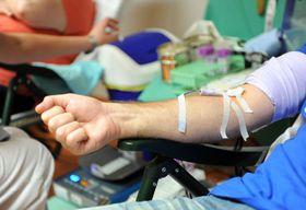 Blut spenden - darovat krev (Foto: Filip Jandourek, Archiv des Tschechischen Rundfunks)
