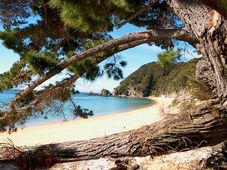 Abel Tasman National Park, photo: CC0 Public Domain