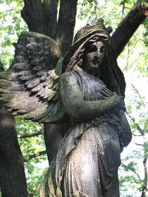 Le cimetière d'Olšany