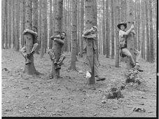 Vilém Spilka Quartet, photo: Site officiel du groupe