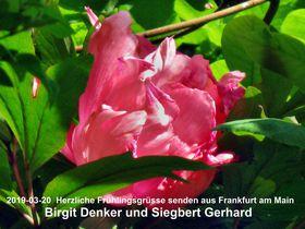 Frühlingsgrüße von Birgit und Siegbert