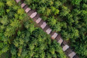 Tůně na svahu Velkého Javorníku, foto: archiv Voda pro lesy