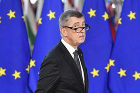 Andrej Babiš (Foto: ČTK / AP / Geert Vanden Wijngaert)