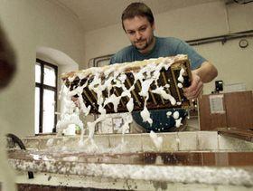 La fabrique de papier, photo: CTK