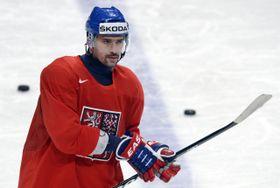 Tomáš Plekanec (Foto: ČTK)