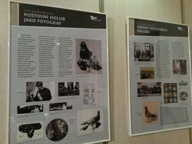 Výstava Holubí pošta vlitoměřickém muzeu, foto: Lucie Valášková, archiv Českého rozhlasu
