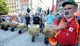 Manifestación de los sindicatos en Praga, foto: ČTK