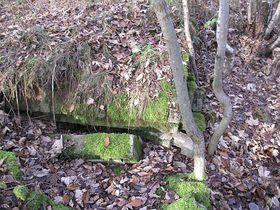 Bunkerüberreste (Foto: Naďa Reviláková, Tschechischer Rundfunk)