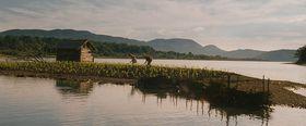 'Corn Island'/ ' Die Maisinsel' (Foto: Film Servis Festival Karlovy Vary)