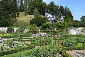 Užitková zahrada, foto: Ondřej Tomšů