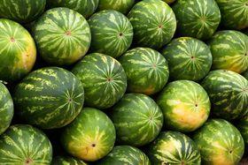 """""""...ein Schwarm Melonen..."""" (Illustrationsfoto: PublicDomainPictures, Pixabay / CC0)"""